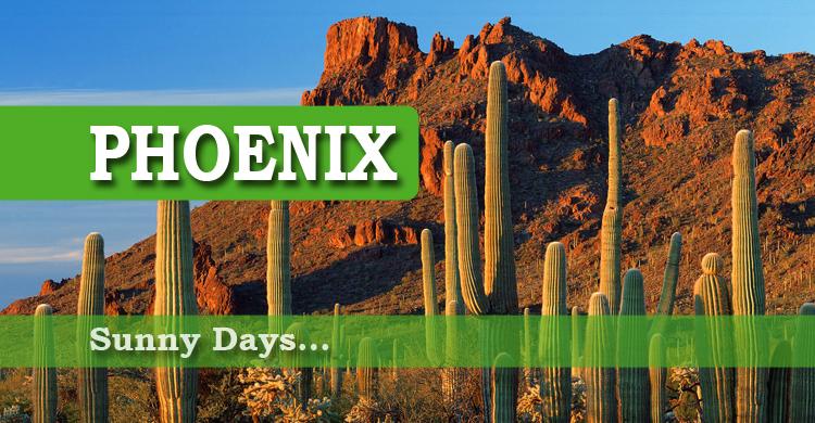 Stay Phoenix copy