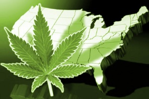 legalized-marijuana